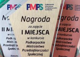 Podkarpackie Mistrzostwa Przedsiębiorczości Społecznej wyniki